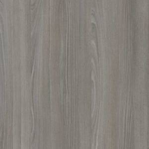 FI 1164 Moon Beech (OAK)