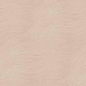 FI 1699 Sandstone(DGL)
