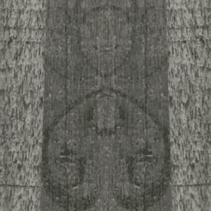 FI 7206 FLR Elegant Wood Scar